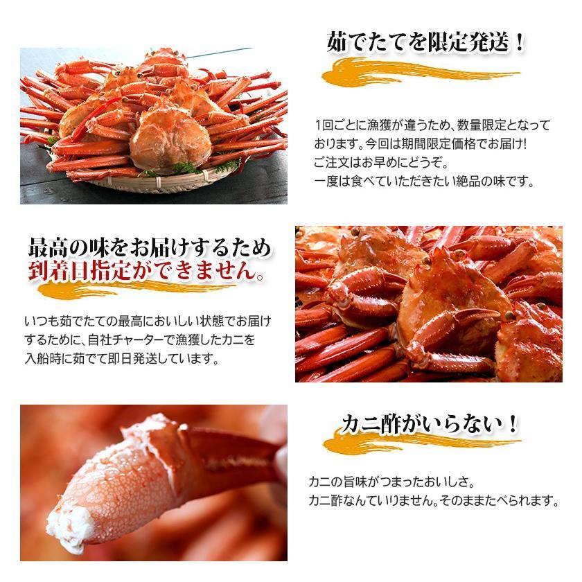 【緊急企画】ステイホーム特別価格!茹でたて紅ずわい蟹 詰め合わせ 総量3kg kobari-kaniya 03