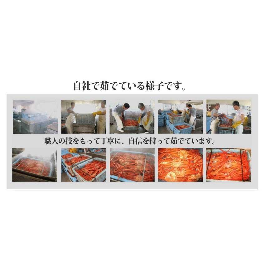 【緊急企画】ステイホーム特別価格!茹でたて紅ずわい蟹 詰め合わせ 総量3kg kobari-kaniya 05