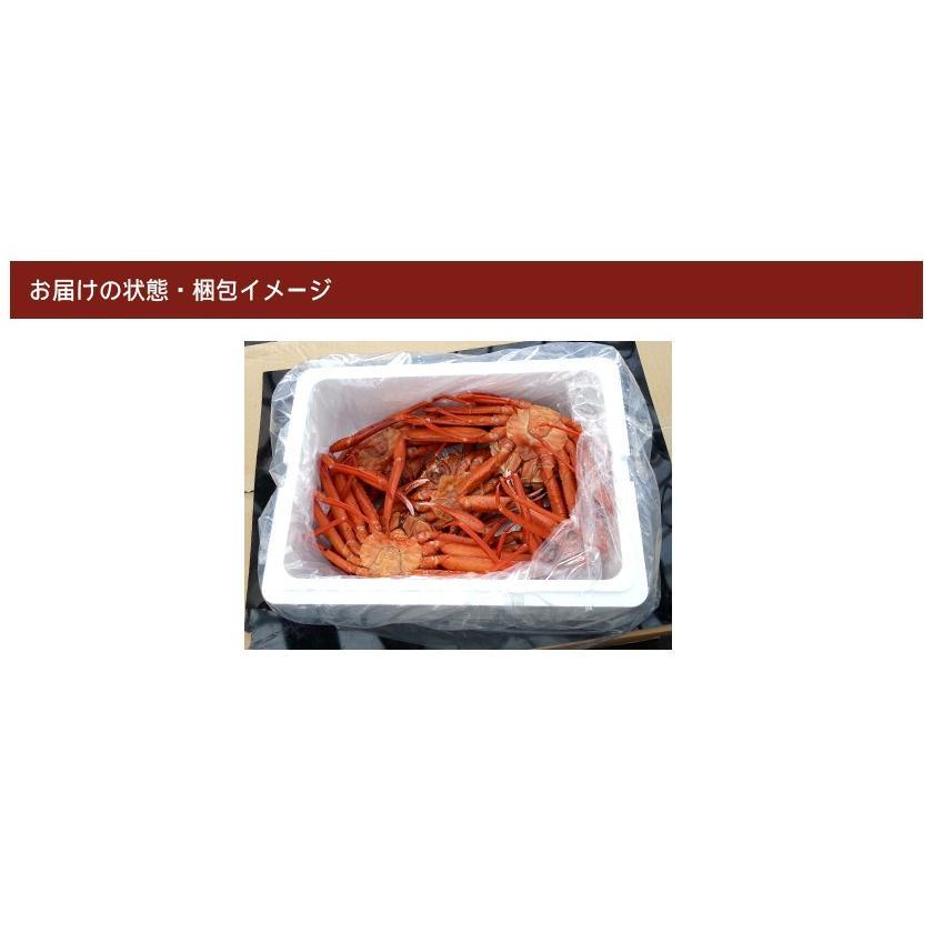 【緊急企画】ステイホーム特別価格!茹でたて紅ずわい蟹 詰め合わせ 総量3kg kobari-kaniya 06