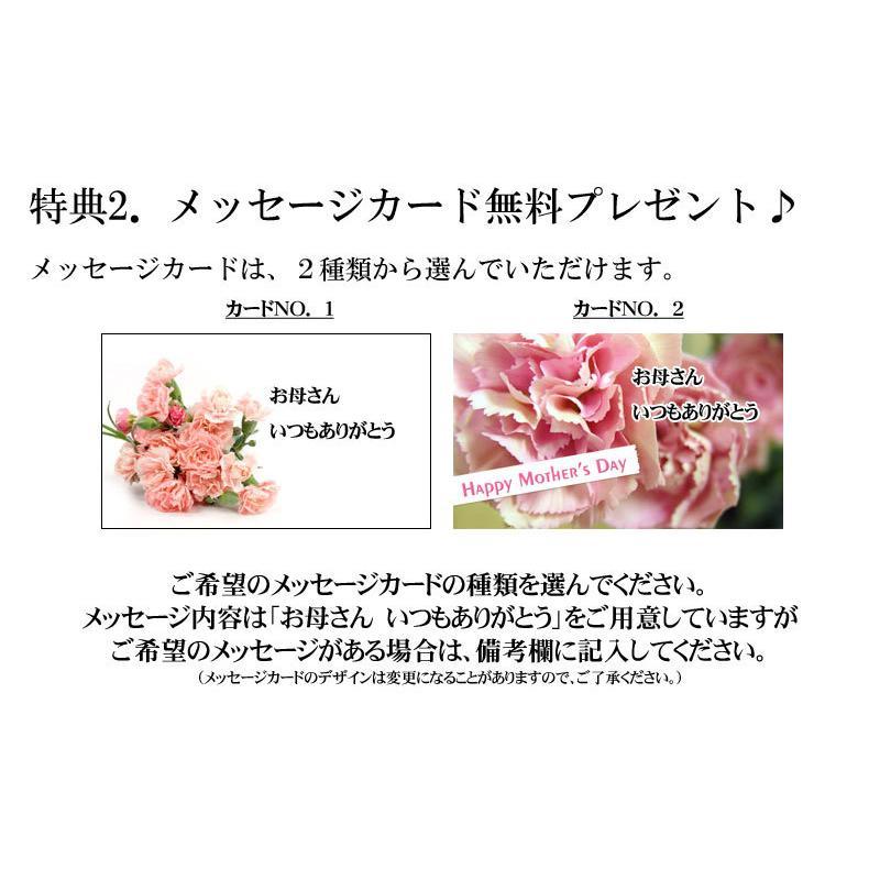 母の日 スイーツ ギフトラッピング プレゼント 2021  スイーツ  焼き菓子セット 送料無料 mother|kobe|06