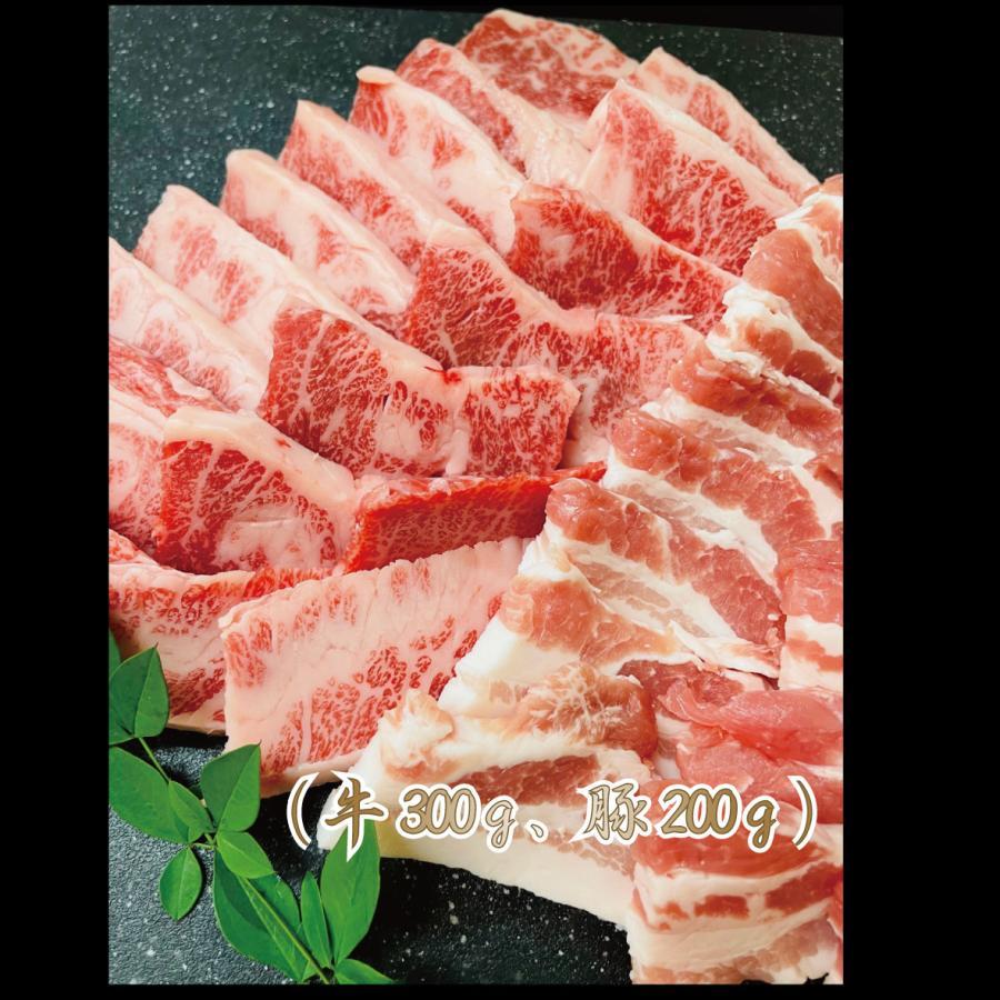 焼肉 牛肉 肉 豚肉 バーベキュー カルビ 食べ比べ セット 500g 国産 焼き肉 送料込み kobeusunaga 02