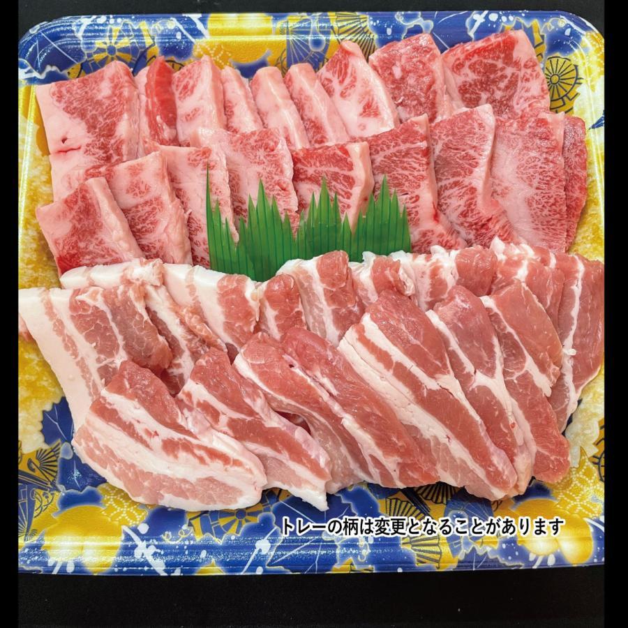 焼肉 牛肉 肉 豚肉 バーベキュー カルビ 食べ比べ セット 500g 国産 焼き肉 送料込み kobeusunaga 03