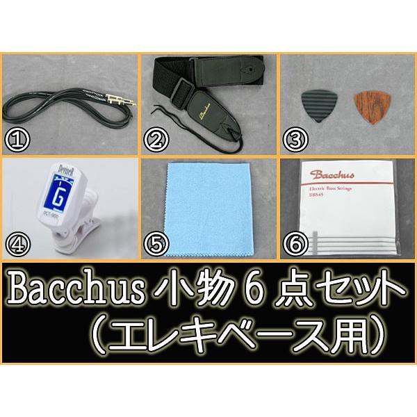 時間指定不可 Bacchus エレキベース用 ◆在庫限り◆ アンプ無し 小物6点セット