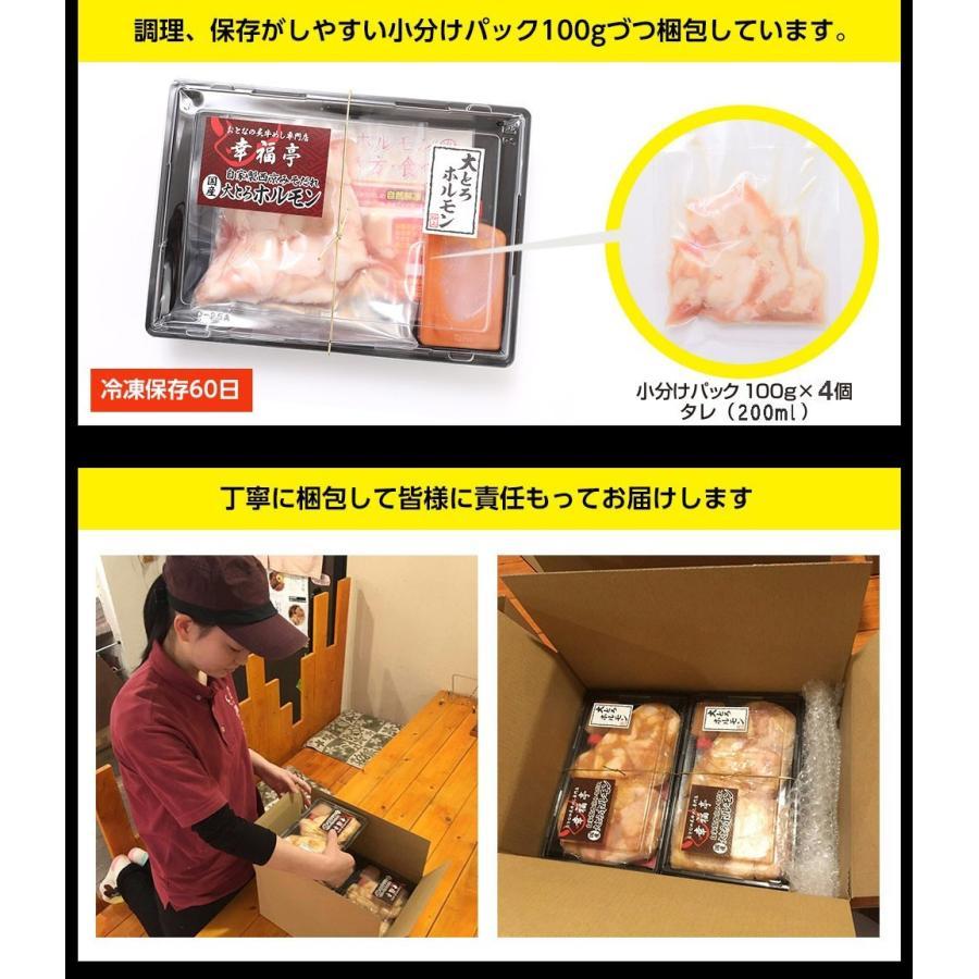 ホルモン 焼肉 ホルモン焼き お取り寄せグルメ うちホル 肉 BBQ 牛ホルモン 国産牛 大トロ ホルモン 400g(4〜5人前) 自家製みそ kofukutei 19