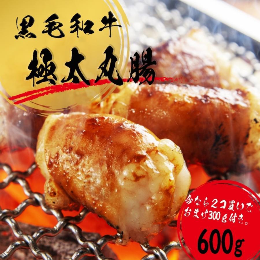 ホルモン 焼肉 ホルモン焼き お取り寄せグルメ ギフト うちホル 焼き肉 BBQ牛肉 ご飯のお供 シマチョウ 中トロ ホルモン 300g|kofukutei