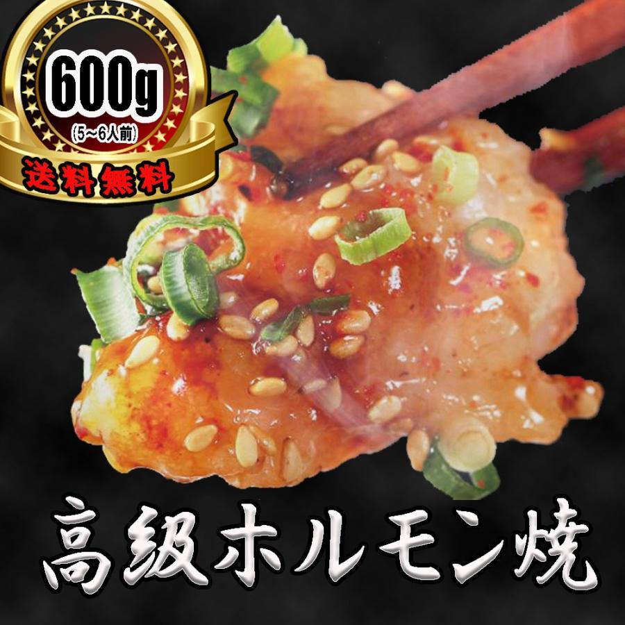 ホルモン 焼肉 BBQ 焼き肉  肉 ホルモン焼き お取り寄せグルメ ギフト うちホル 牛肉 ご飯のお供  中トロ ホルモン 600g(5〜6人前)|kofukutei