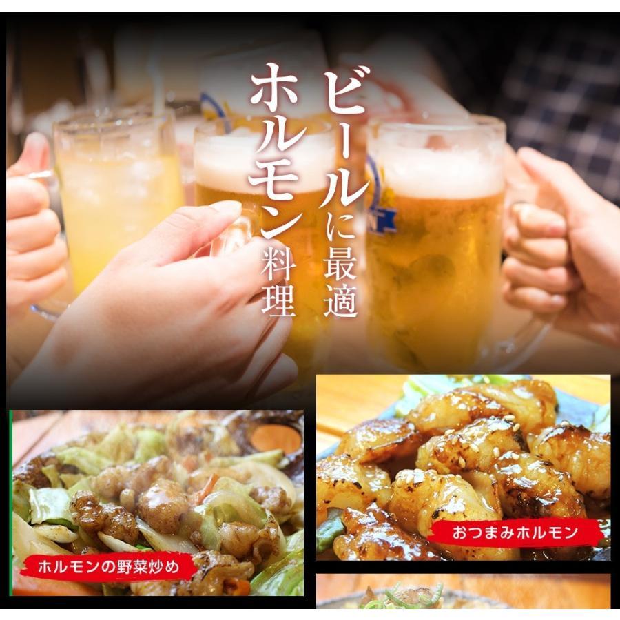 ホルモン 焼肉 BBQ 焼き肉  肉 ホルモン焼き お取り寄せグルメ ギフト うちホル 牛肉 ご飯のお供  中トロ ホルモン 600g(5〜6人前)|kofukutei|14