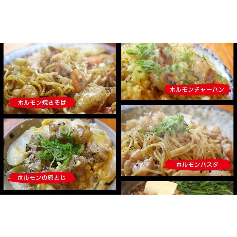 ホルモン 焼肉 BBQ 焼き肉  肉 ホルモン焼き お取り寄せグルメ ギフト うちホル 牛肉 ご飯のお供  中トロ ホルモン 600g(5〜6人前)|kofukutei|15