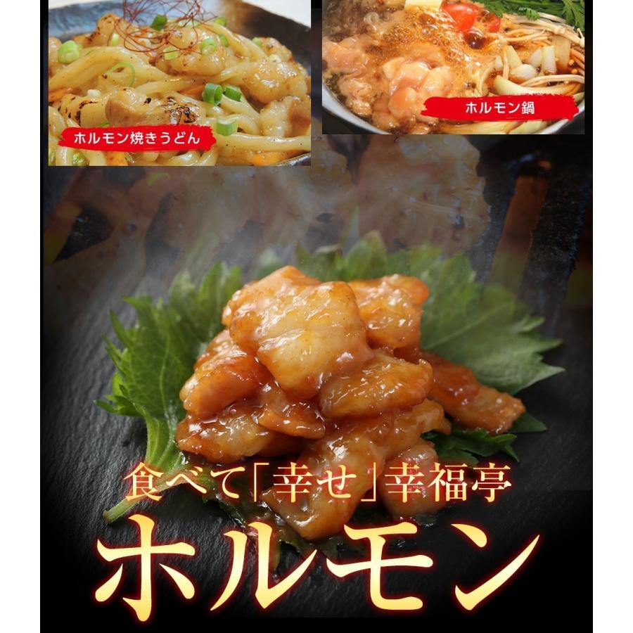 ホルモン 焼肉 BBQ 焼き肉  肉 ホルモン焼き お取り寄せグルメ ギフト うちホル 牛肉 ご飯のお供  中トロ ホルモン 600g(5〜6人前)|kofukutei|16