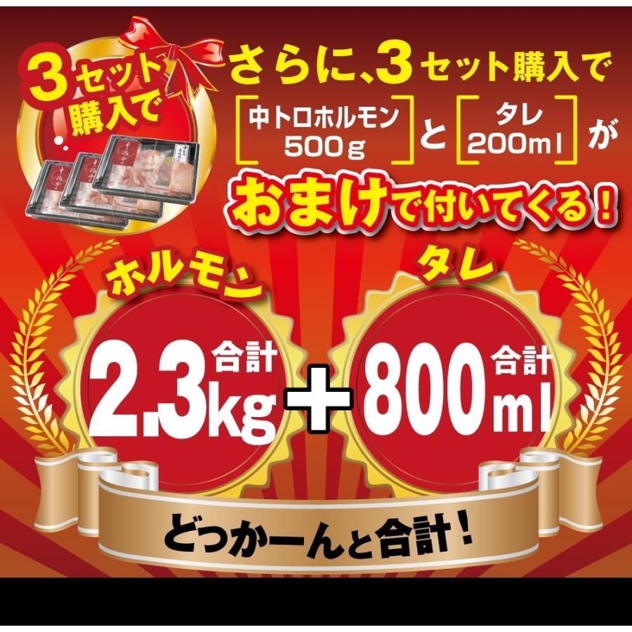 ホルモン 焼肉 BBQ 焼き肉  肉 ホルモン焼き お取り寄せグルメ ギフト うちホル 牛肉 ご飯のお供  中トロ ホルモン 600g(5〜6人前)|kofukutei|18