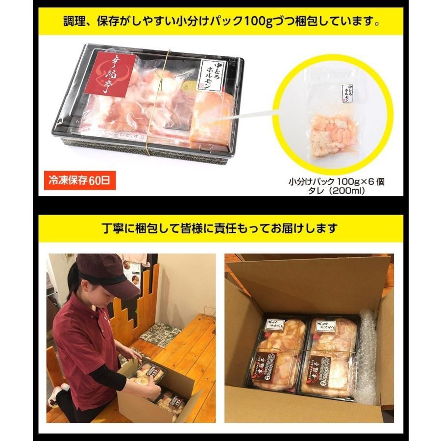 ホルモン 焼肉 BBQ 焼き肉  肉 ホルモン焼き お取り寄せグルメ ギフト うちホル 牛肉 ご飯のお供  中トロ ホルモン 600g(5〜6人前)|kofukutei|19