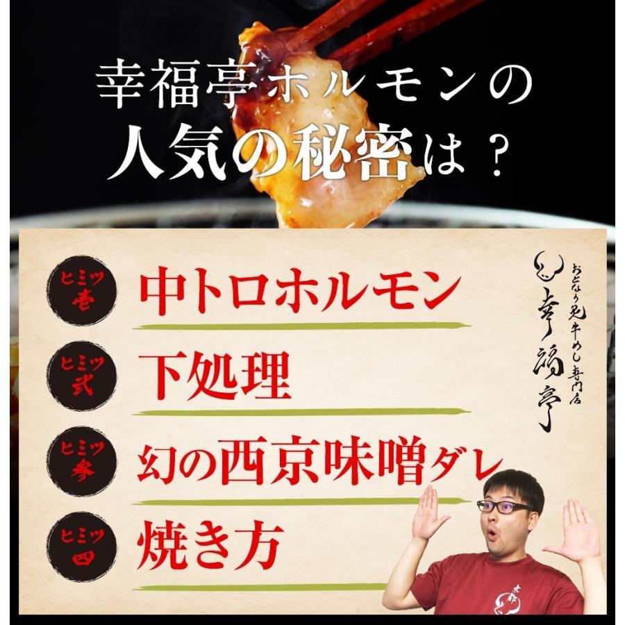 ホルモン 焼肉 BBQ 焼き肉  肉 ホルモン焼き お取り寄せグルメ ギフト うちホル 牛肉 ご飯のお供  中トロ ホルモン 600g(5〜6人前)|kofukutei|09