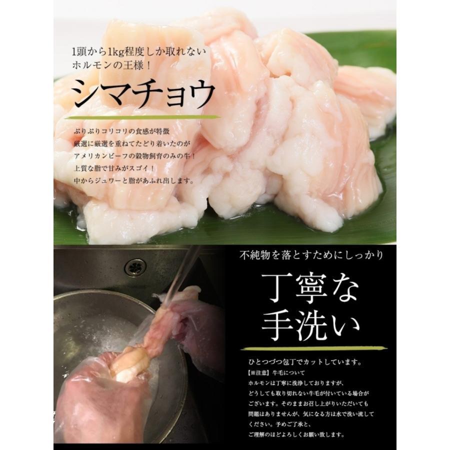ホルモン 焼肉 BBQ 焼き肉  肉 ホルモン焼き お取り寄せグルメ ギフト うちホル 牛肉 ご飯のお供  中トロ ホルモン 600g(5〜6人前)|kofukutei|10