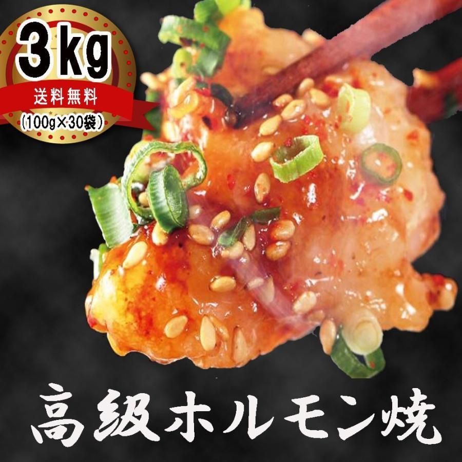 ホルモン 焼肉 ホルモン焼き3kg(100gずつ小分け) お取り寄せグルメ ギフト BBQ シマチョウ 中トロホルモン メガ盛り kofukutei