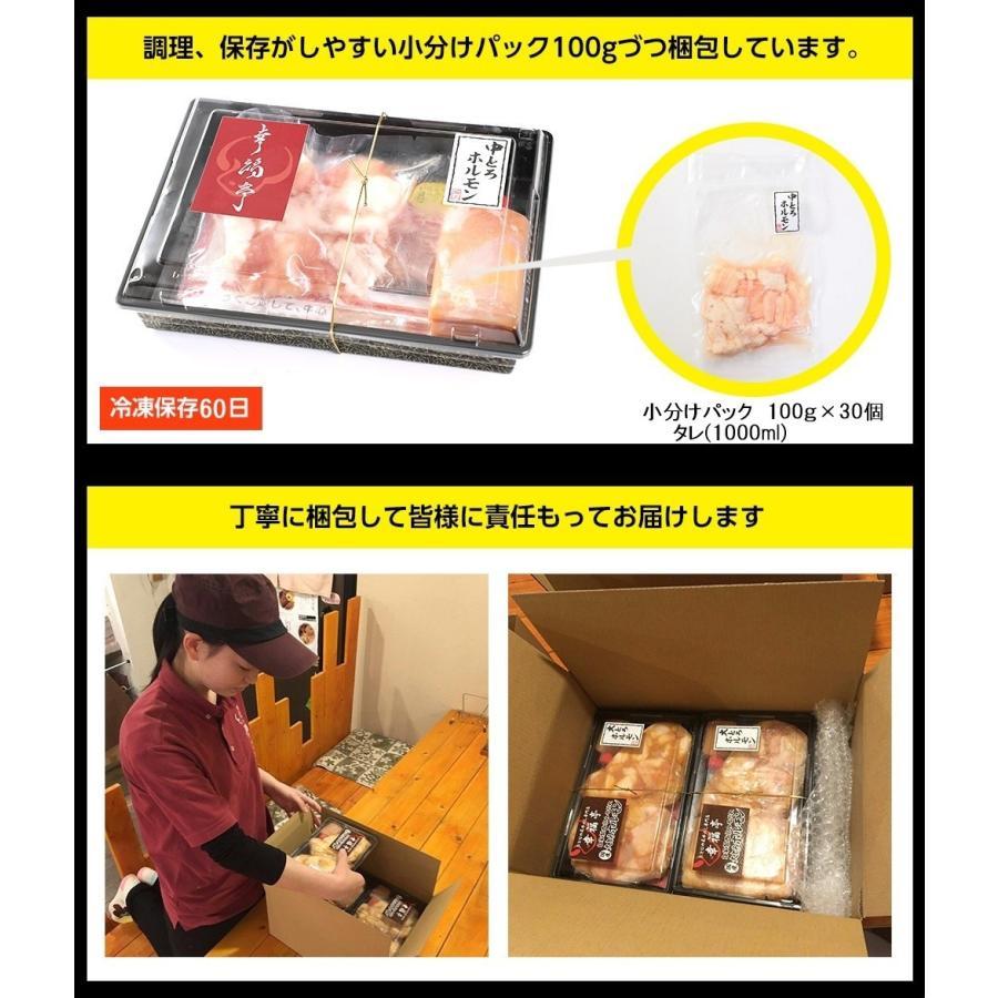ホルモン 焼肉 ホルモン焼き3kg(100gずつ小分け) お取り寄せグルメ ギフト BBQ シマチョウ 中トロホルモン メガ盛り kofukutei 16