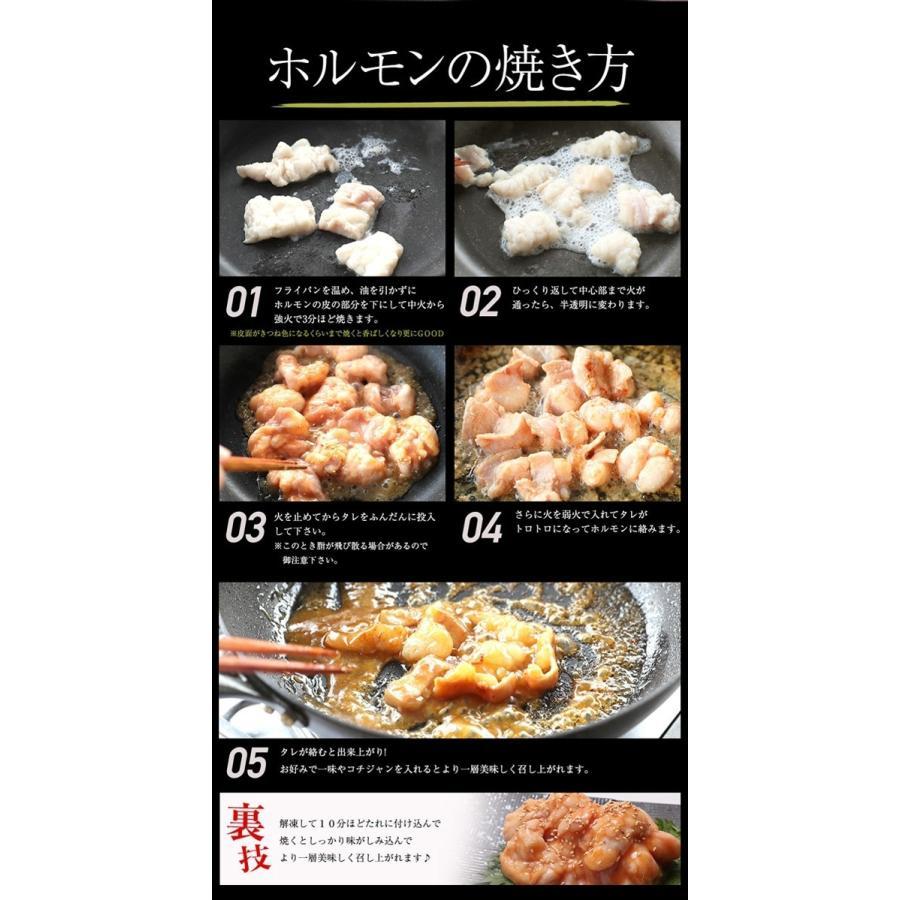 ホルモン 国産牛 焼肉 ホルモン焼き お取り寄せグルメ ギフト うちホル BBQ  肉 牛肉 牛ホルモン  国産大トロ ホルモン 600g  味噌味 kofukutei 13