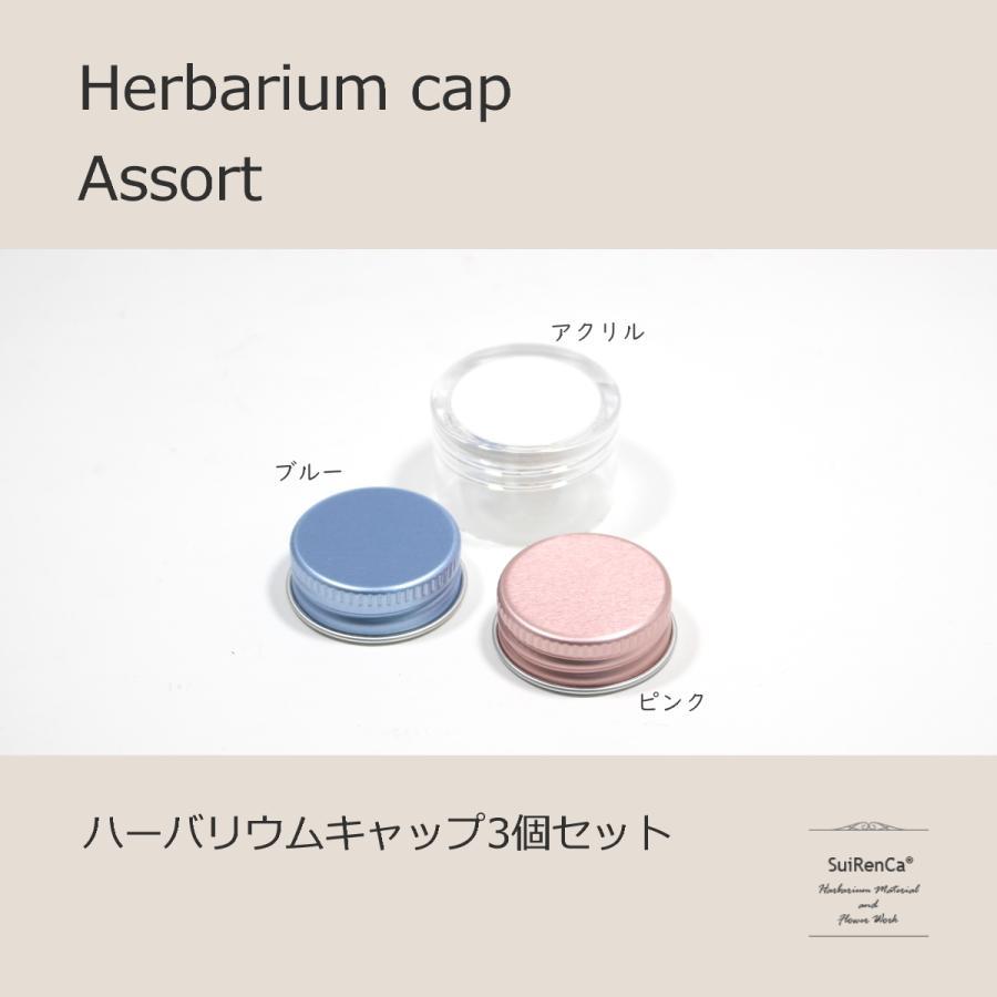 ハーバリウム アルミ 爆売りセール開催中 カラー アクリル キャップ3個入 アソート 価格 CAP-A