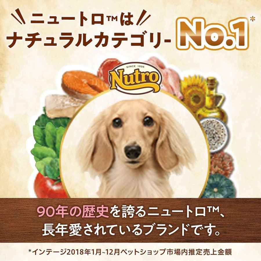 店内ポイント最大24倍!ニュートロ ナチュラルチョイス ドッグフード 小型犬 エイジングケア チキン&玄米 6kg 無添加|koji|05