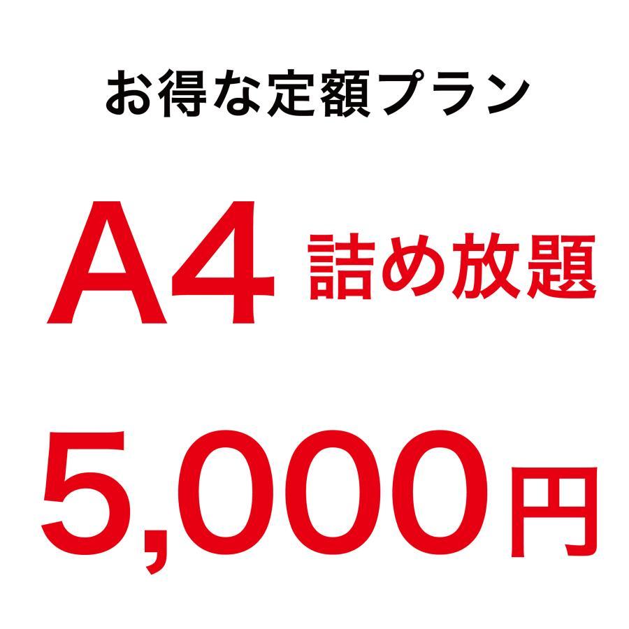 アクリル印刷 詰め放題 定額4000円 A4サイズ 3mm透明アクリル内に詰め放題、切り放題。お好きなデザインで印刷できます。アクキーづくりに!|kojima-shop1