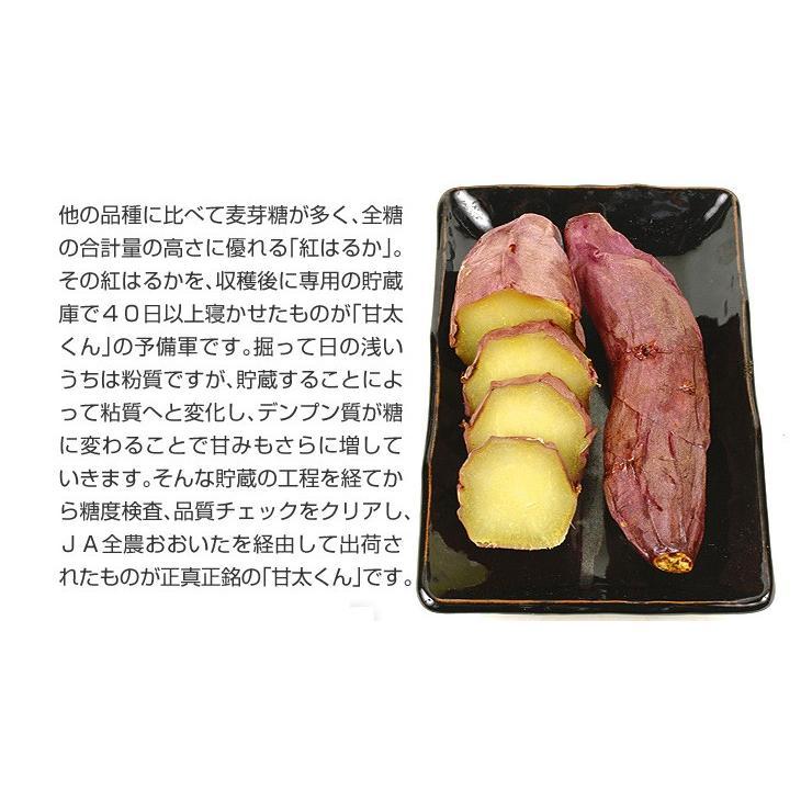 食品 大分産 甘太くん 5kg 1組 さつまいも 国華園 kokkaen 07
