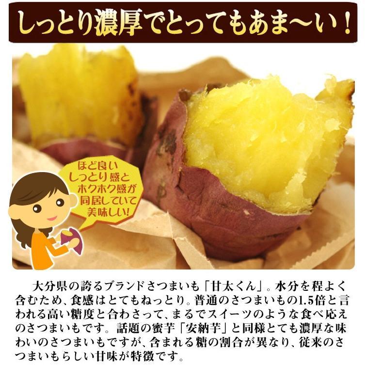 食品 大分産 甘太くん 5kg 1組 さつまいも 国華園 kokkaen 09
