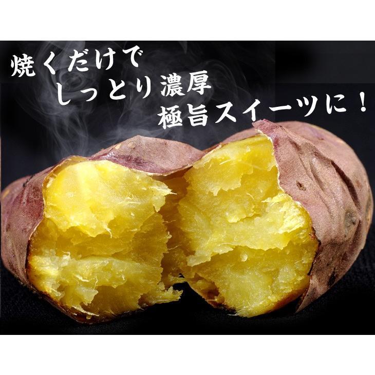 食品 大分産 甘太くん 5kg 1組 さつまいも 国華園 kokkaen 10