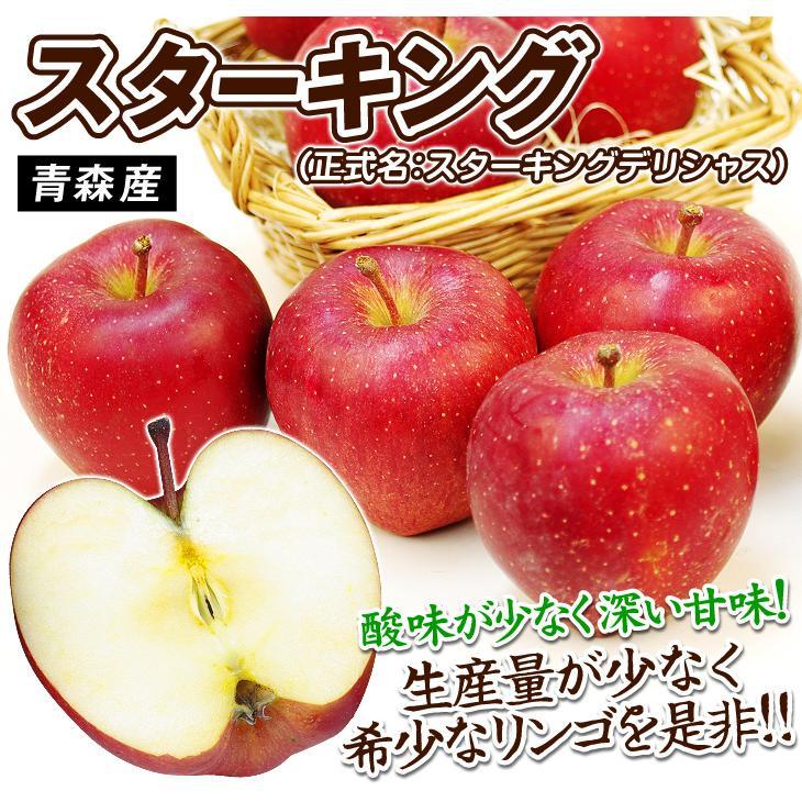 りんご 青森産 スターキング(10kg)28〜56玉 昭和の懐かしの味 スター ...