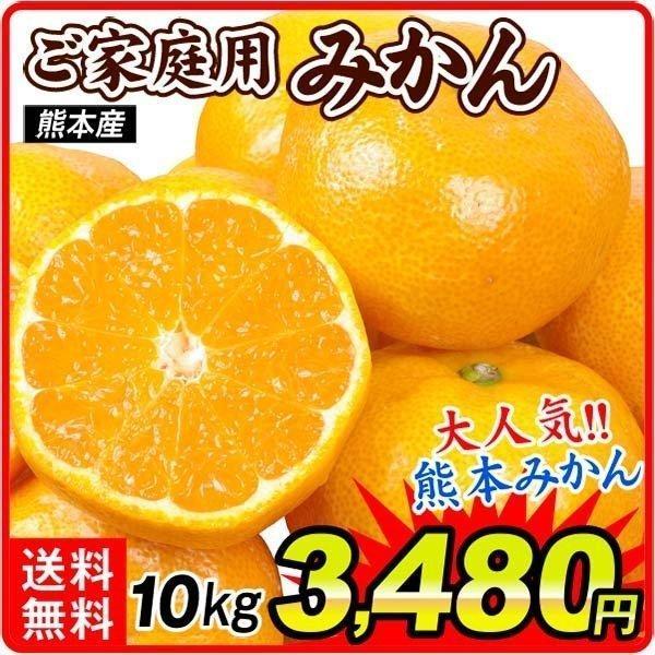 みかん ご家庭用 熊本産みかん(10kg)熊本 蜜柑 柑橘 フルーツ 果物 食品 国華園 kokkaen