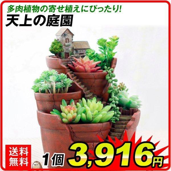 鉢 植木鉢 ポリ製 多肉植物 寄せ植え かわいい プチオアシス・天上の庭園 1個 女性 プレゼント 国華園 kokkaen
