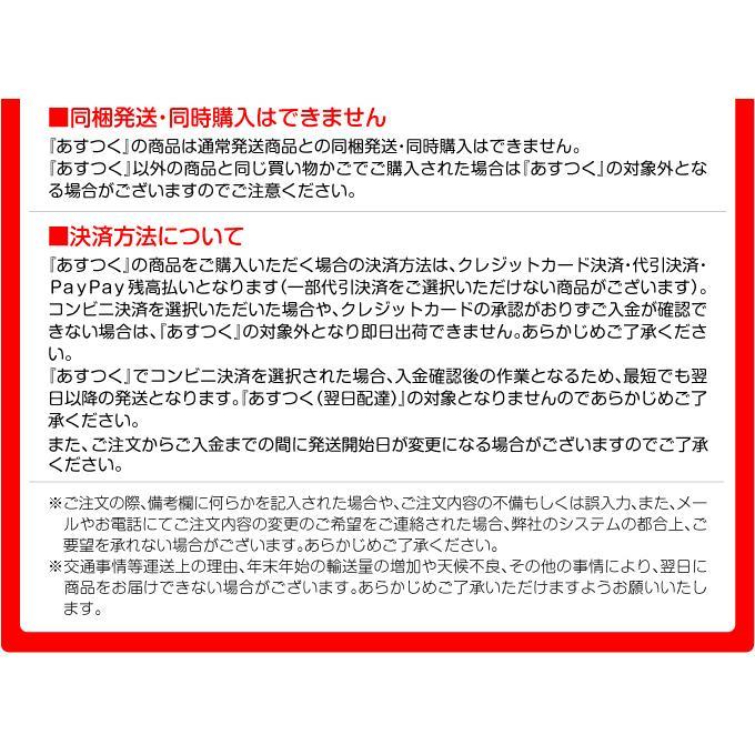 アーチ ガーデンアーチ ローズアーチ バラアーチ 鉄製アーチ・ミスリル 1個 ガーデニング 国華園 kokkaen 08