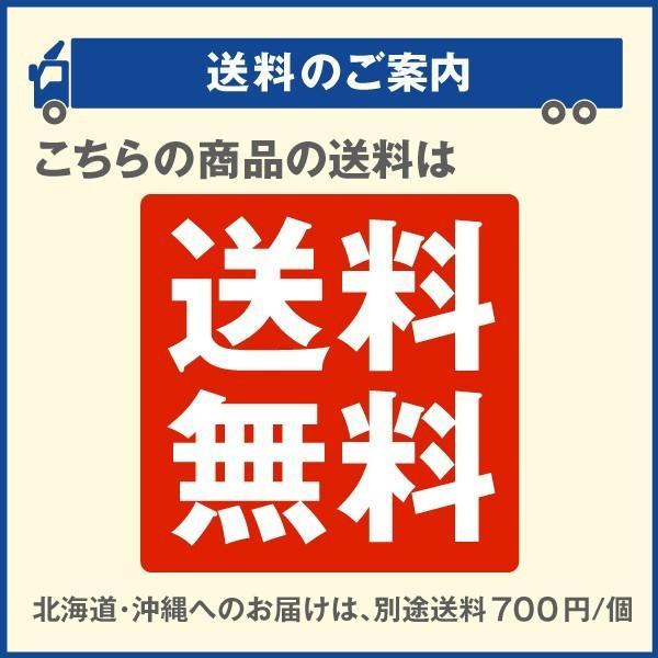 アーチ ガーデンアーチ ローズアーチ バラアーチ 鉄製アーチ・ミスリル 1個 ガーデニング 国華園 kokkaen 09