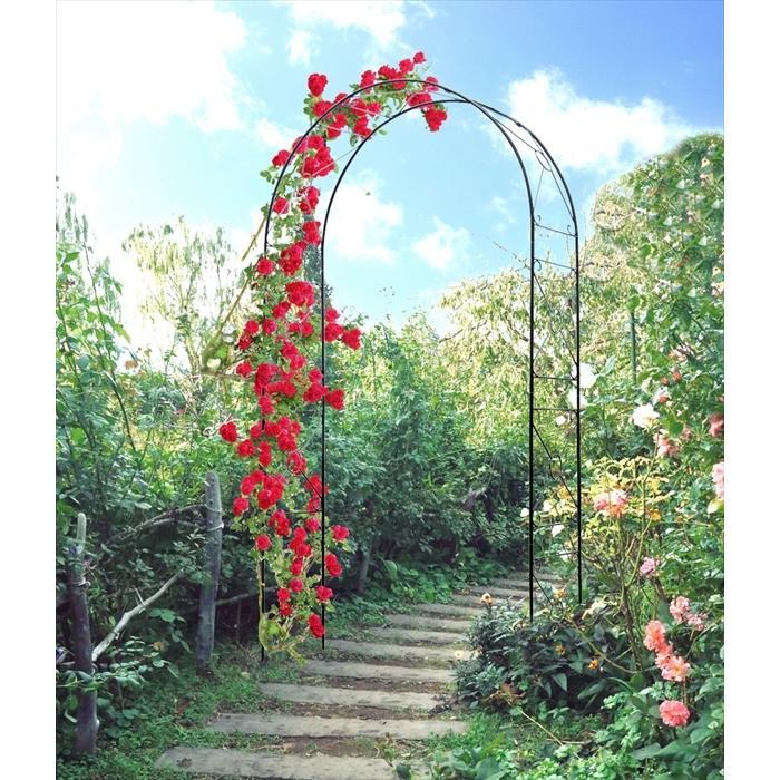 アーチ ガーデンアーチ ローズアーチ バラアーチ 鉄製アーチ・ミスリル 1個 ガーデニング 国華園 kokkaen 04