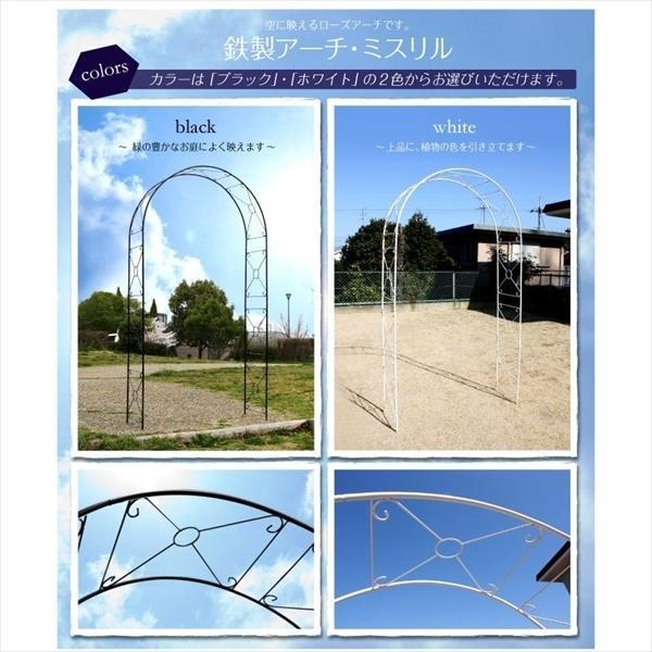 アーチ ガーデンアーチ ローズアーチ バラアーチ 鉄製アーチ・ミスリル 1個 ガーデニング 国華園 kokkaen 05