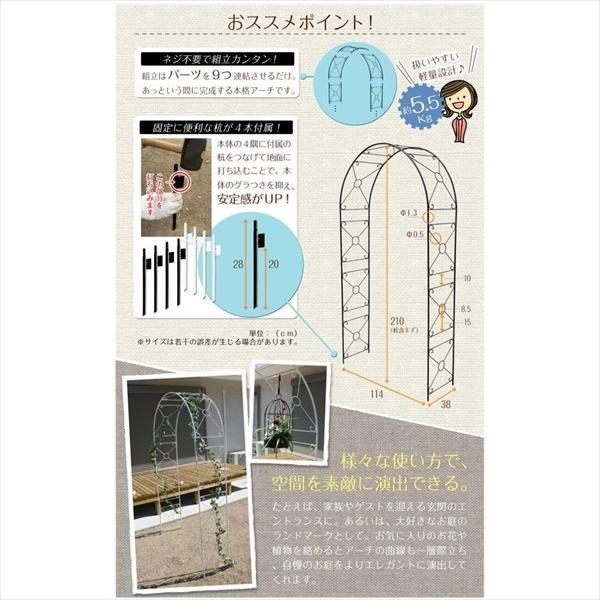 アーチ ガーデンアーチ ローズアーチ バラアーチ 鉄製アーチ・ミスリル 1個 ガーデニング 国華園 kokkaen 06