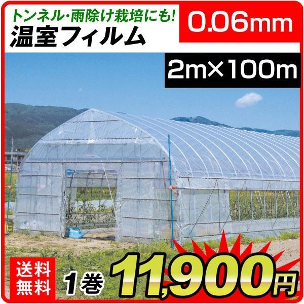ビニール フィルム 温室フィルム(0.06mm) 2m×100m 1巻 被覆資材 農業用フィルム 国華園