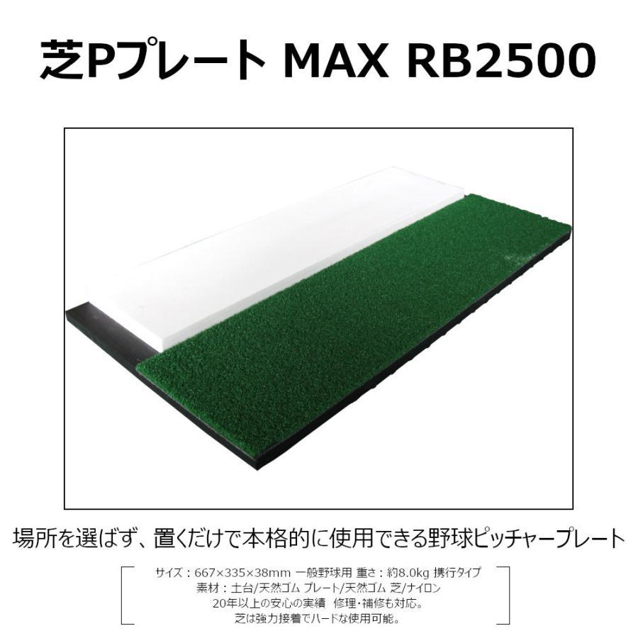 野球ベース ピッチャープレート コクサイ KOKUSAI 芝PプレートMAX 一般用 RB2500-II 1台 送料無料|kokusai-shop|03