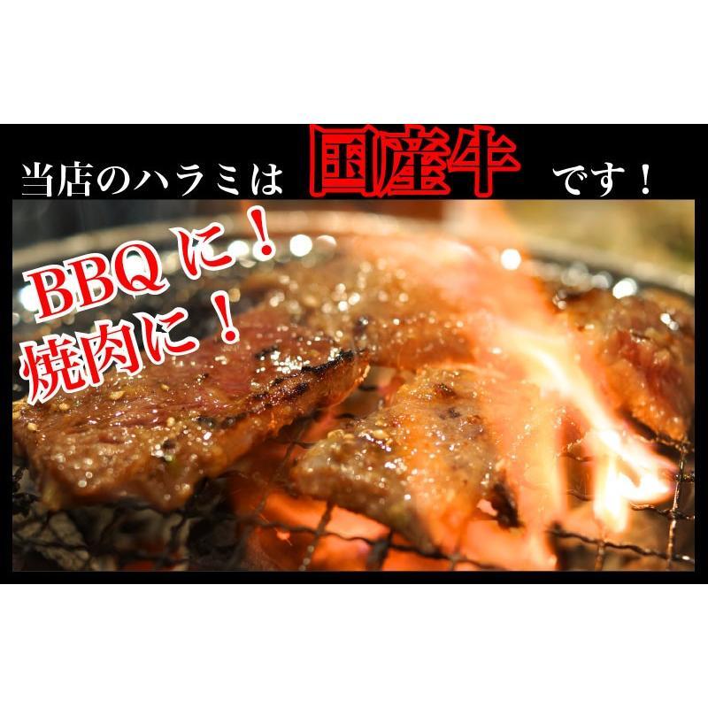 国産牛 ハラミ 500g /鹿児島 国産 薩摩 ハラミ ホルモン 内臓 牛肉 焼肉 贈答 高級 誕生日 結婚記念 記念(kagoshimabeef) komachi-k 02