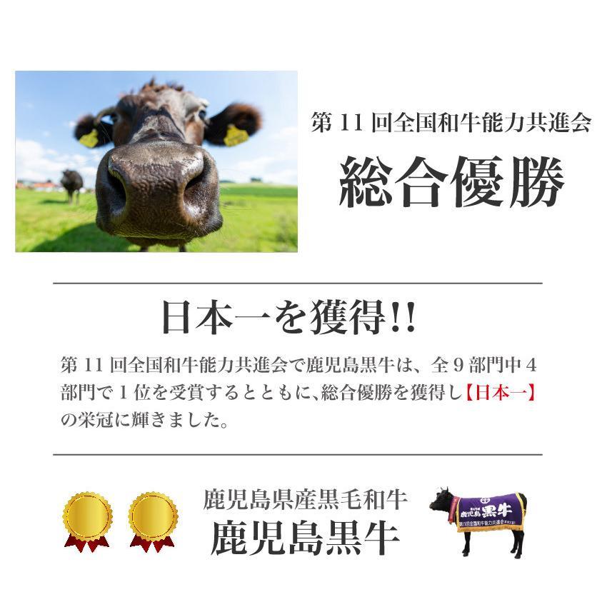 鹿児島黒毛和牛特上サーロイン 200g x 3枚 /鹿児島 薩摩 ステーキ サーロイン 牛肉 焼肉 贈答 高級 特上 誕生日 結婚記念 記念(kagoshimabeef)|komachi-k|02