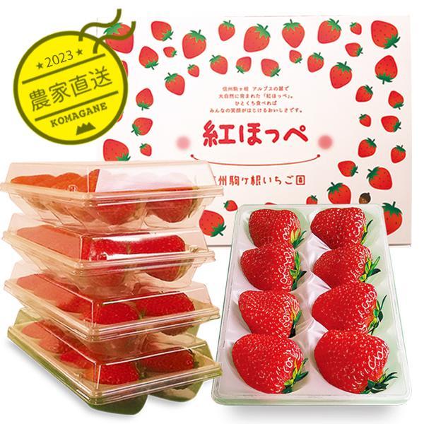 紅ほっぺ4パック・ギフト用&自家用に|komagane-ichigo