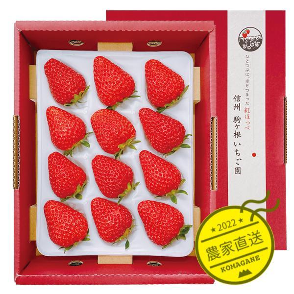 贈答用・特大いちご・紅ほっぺスーパープレミアム9粒または12粒400~450g 1箱|komagane-ichigo