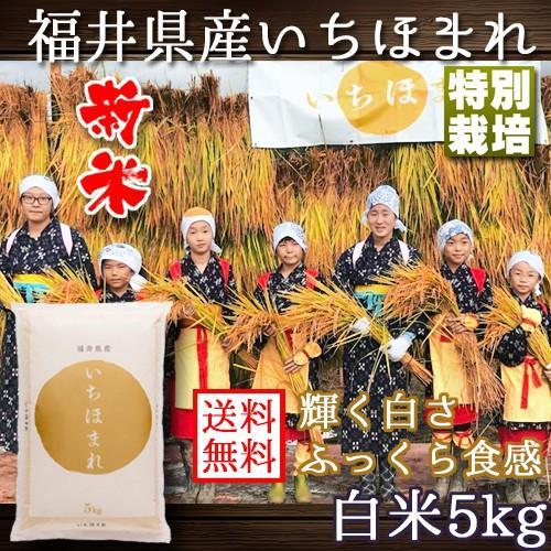 新米 いちほまれ 福井県産 令和3年産 5kg 特別栽培 komedonyakuranosuke