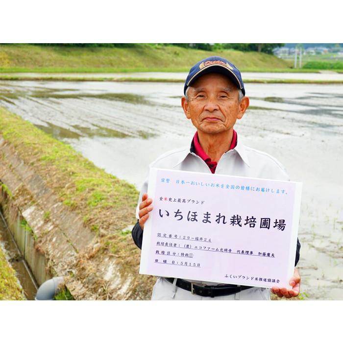 新米 いちほまれ 福井県産 令和3年産 5kg 特別栽培 komedonyakuranosuke 06