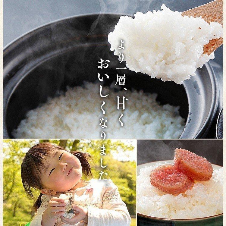 無 洗米 と は