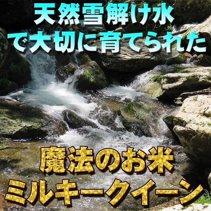 お米<送料無料>新潟県南魚沼産ミルキークイーン 玄米10kg 令和2年産米 精米無料|komenouka|06