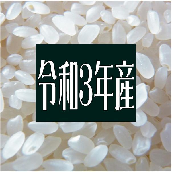 米 令和3年度産 新潟県 南魚沼塩沢産 コシヒカリ 5kg|komeq-nagoya|02