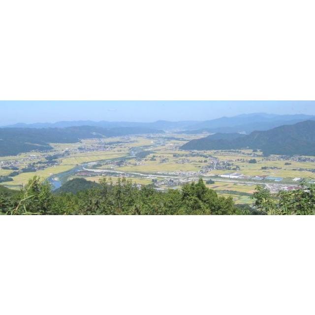米 令和3年度産 新潟県 南魚沼塩沢産 コシヒカリ 5kg|komeq-nagoya|05