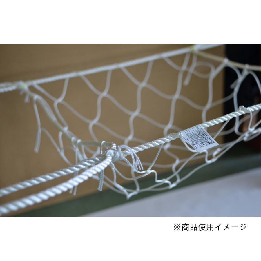 ハウス用安全ネット 5m×10m