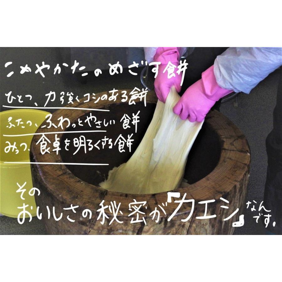 【予約】12/1より発送  餅 もち 杵つき女もち 12個入 komeyakata 02