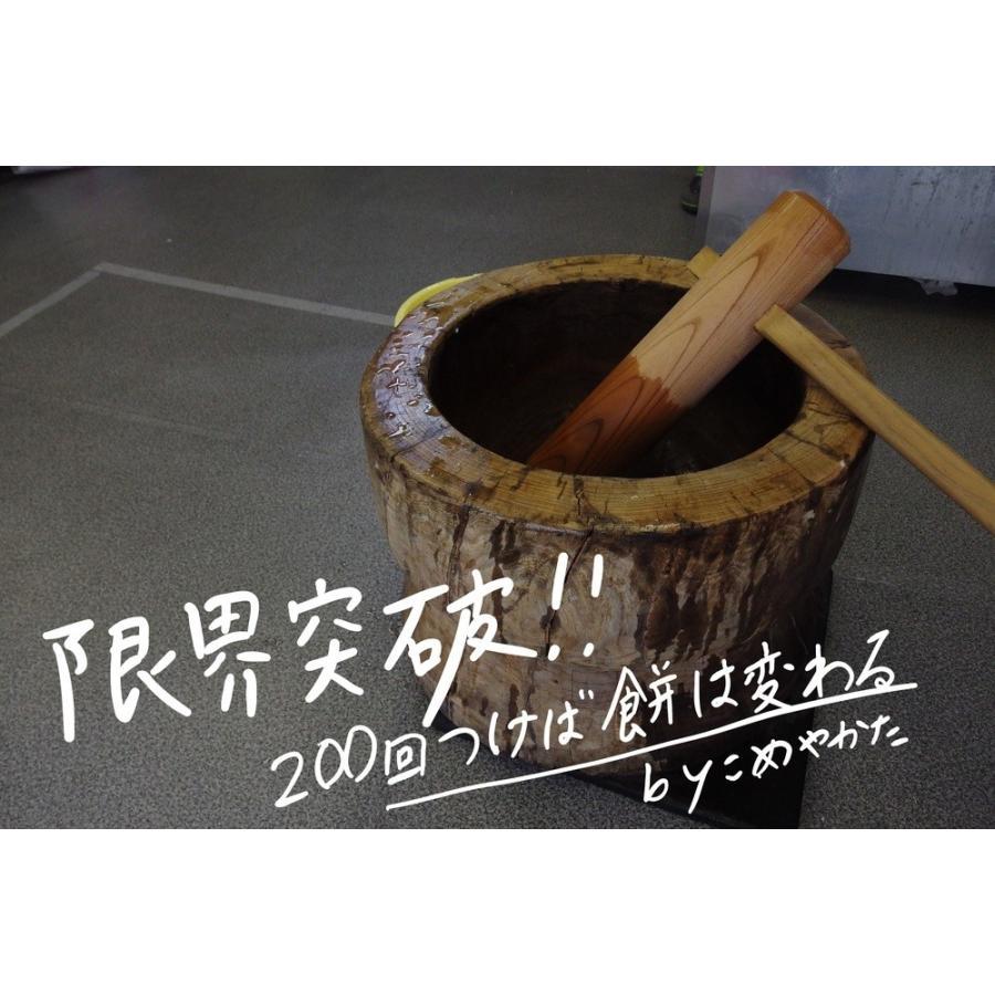 【予約】12/1より発送 餅 もち 杵つき男もち 10枚入り komeyakata 10