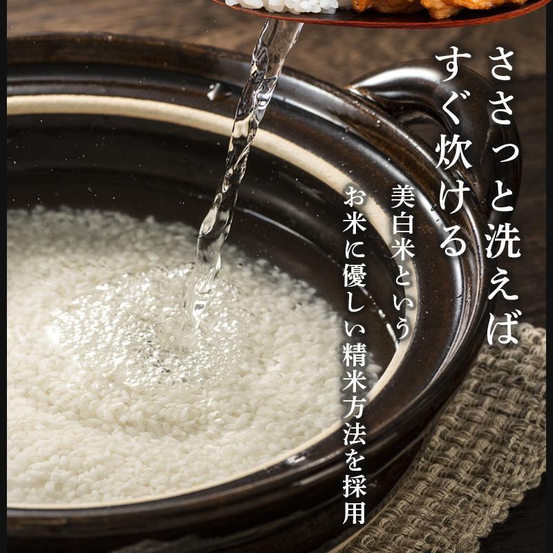 お米 米10kg 5kg×2 新米 白米 送料無料 ポイント 新潟産 コシヒカリ こしひかり 令和3年産 2021 あすつく対応|komeyakatagiri|06